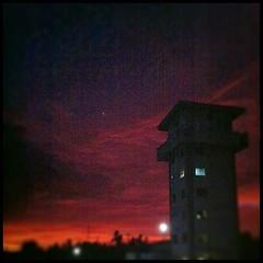 13/31: Open skies. dusk. #photoadayjuly