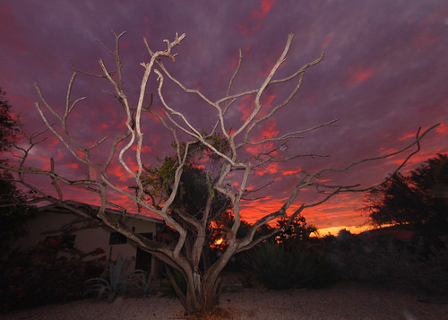 sunset sky night cloudy thegalaxy ©allrightsreserved bestcapturesaoi