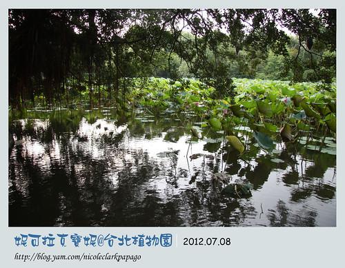 台北植物園8