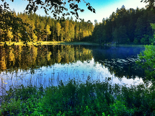 summer lake forest reflections landscape sweden country iphone4 100commentgroup peternyhlén mygearandme