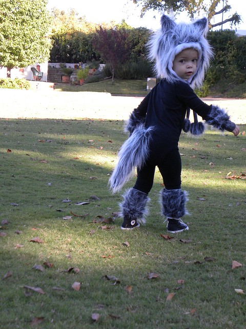 Baby Wolf Costume Custom Order Halloween