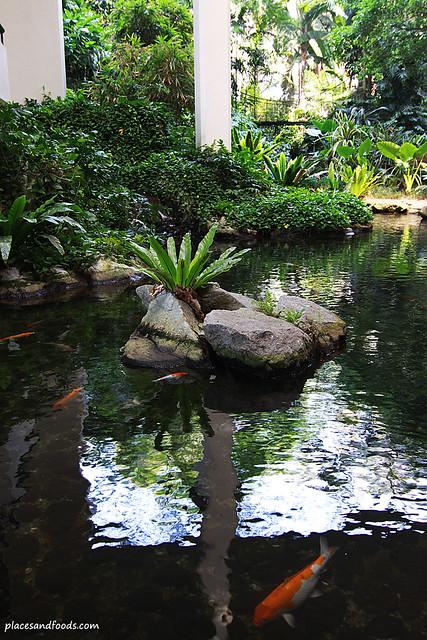 Equatorial hotel penang pond