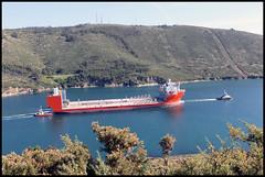 Blue Marlin en Ferrol (X)