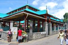 Seychelles - Mahe 310