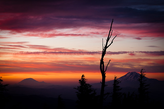 Mt. Rainier and Mt. Adams from Cloud Cap Inn