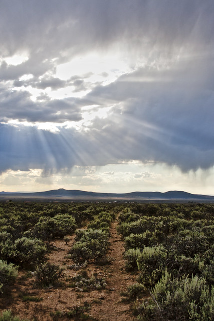 Taos Mesa
