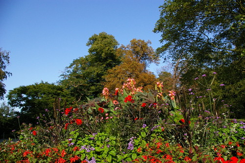 Kew_Gardens-004