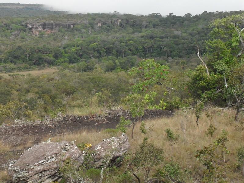 Brazil July 2012 073