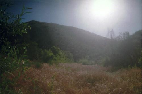 solar flare field