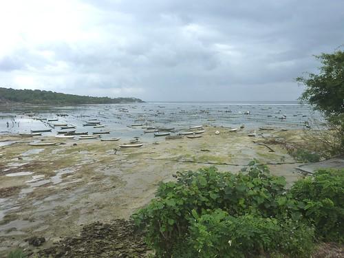 Bali-Lembongan-Ile de Ceningan (2)