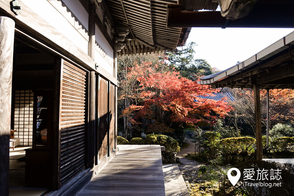 京都赏枫景点 高雄西明寺 08