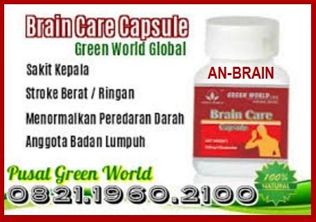 Khasiat Brain Care Capsule