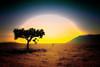 Alone by italianoadoravel ..Wishing Love & Peace