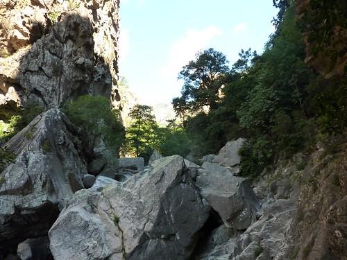 Brèche du Carciara : arrivée du chemin dans le ruisseau vers la fin du canyon