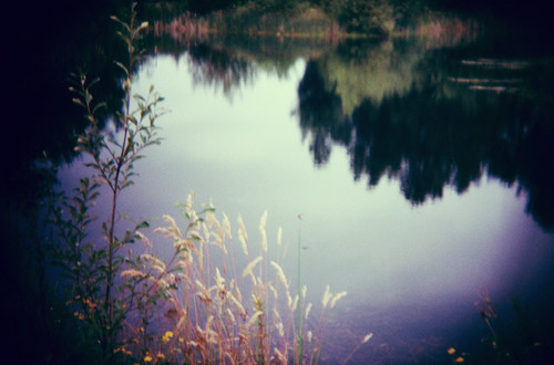 little pond - holga by elle.hanley