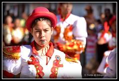 Retratos de una fiesta - La Tirana, 2012