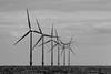 Wind Farm (BW) by Keith Marshall