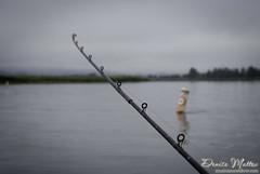 251: Fishing