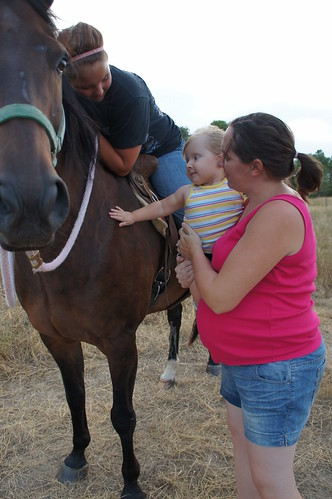Evie petting the horse