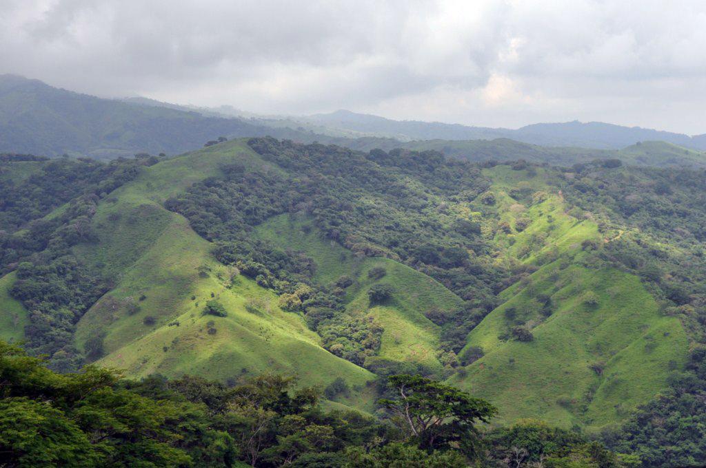 Los 30 kilómetros de subida por serpenteantes caminos de tierra y piedras hasta el pueblo de Santa Elena ofrecen espectaculares vistas de las verdes montañas del centro de Costa Rica monteverde, la reserva biológica del bosque nuboso - 7735180690 581d14e1f9 o - Monteverde, La reserva biológica del bosque nuboso