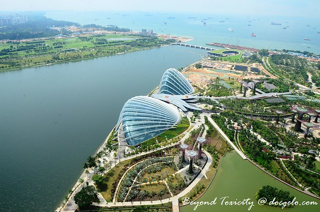 cooled conservatories from sands skypark, marina bay sands