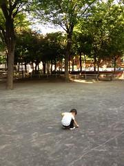 朝散歩 (2012/8/13)
