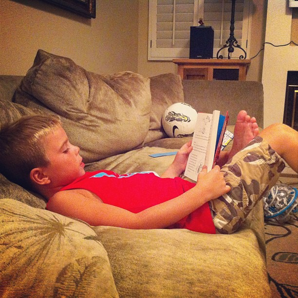 20 minutes of mandatory family reading time. A Diary of a Whimpy Kid.