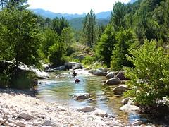 Descente aquatique du ruisseau : vasques vers la fin