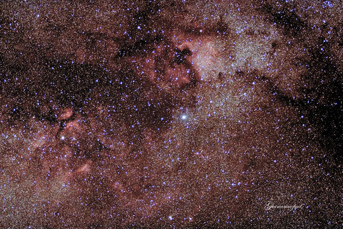 Cygnus constellation! North american nebula and Gamma cygni nebula
