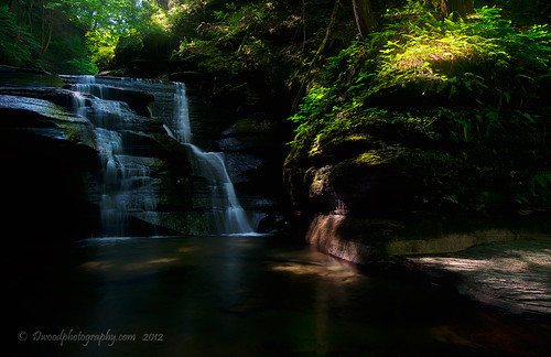 park new york light brown ny newyork green water rock landscape waterfall rocks state stones glen gorge fillmore along oe 2012 fillmoreglenstatepark dwoodphotography dwoodphotographycom lightalongtheglengorge