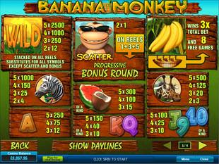 Banana Monkey Slots Payout