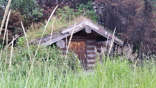 Homer log cabin