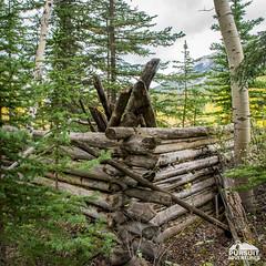 Abandonned Cabin