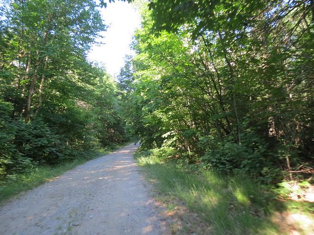 Dirt Road to Cresent lake