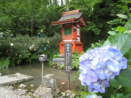 觀音寺11