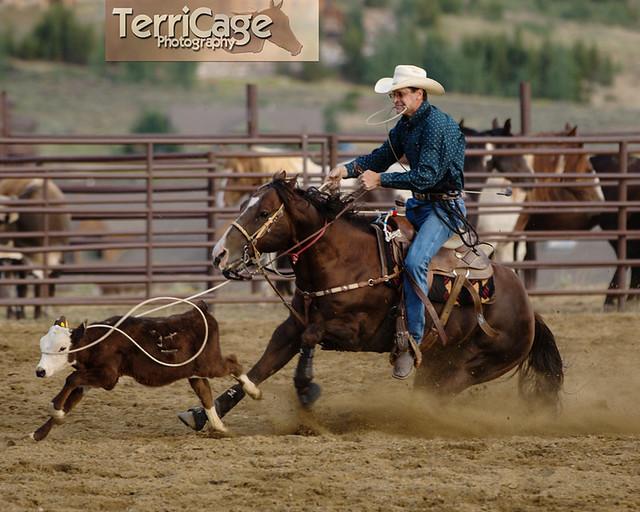 calf roping machine