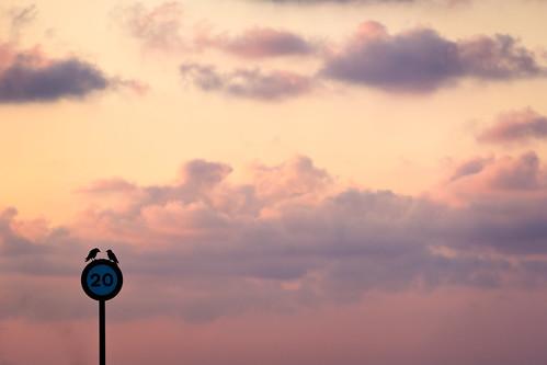 pink sky españa orange birds sign clouds sunrise canon spain rosa aves pájaros amanecer cielo nubes 20 minimalism crows minimalismo naranja minimalist twenty señal ceuta veinte minimalista cuervos 60d