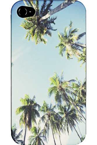 palmy_1