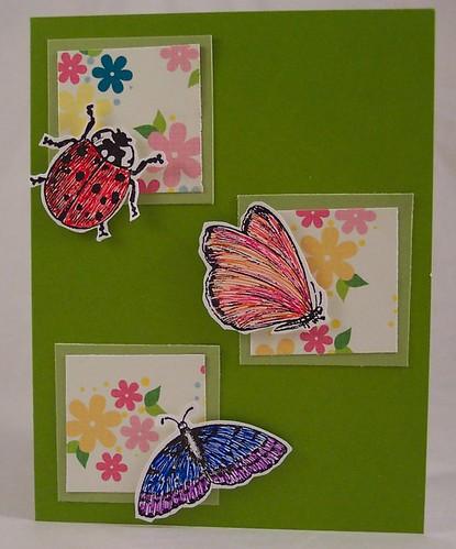 Bugs Card