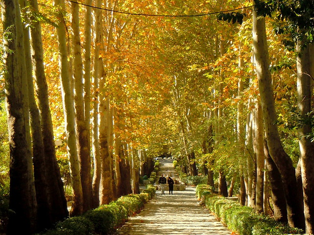Jamshid park dressed in Autumn colors