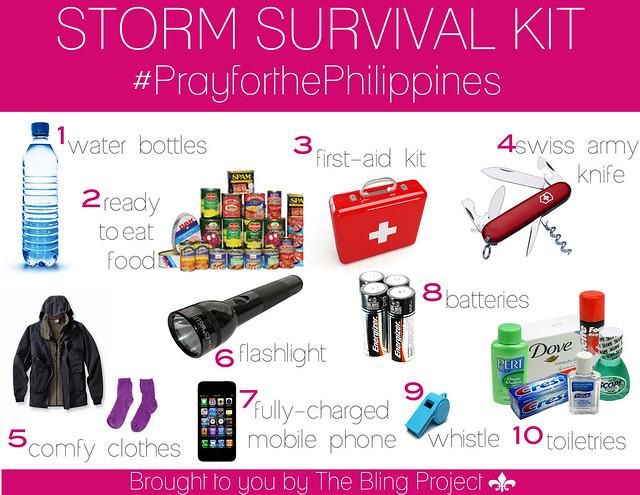 Storm Survival Kit