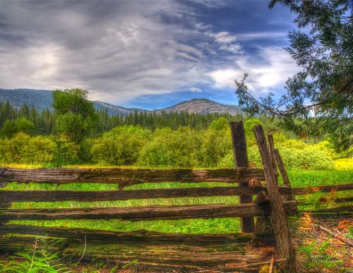 california trees mountains nature forest fence landscape meadow olympus yosemite yosemitenationalpark sierranevada hdr omd wawona m43 mft em5 wawonadome 1250mmf3563mzuiko