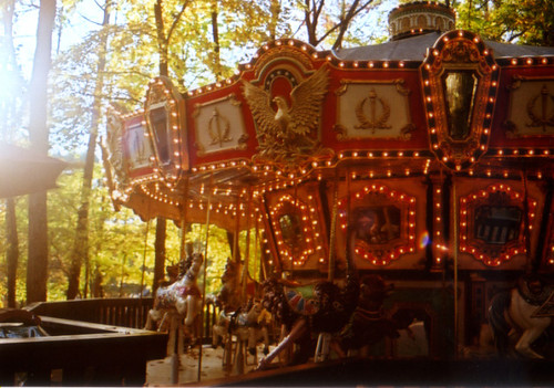 Merry-go-round in the forest