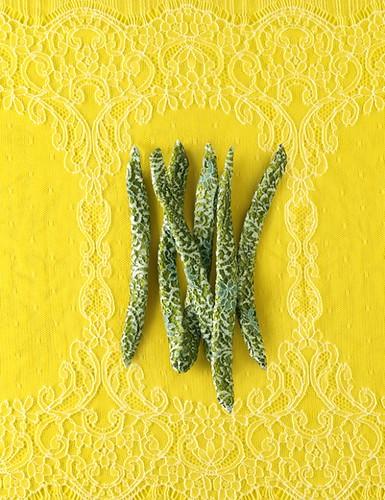 sophie-halette-beans