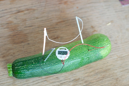 Zucchini-Strom