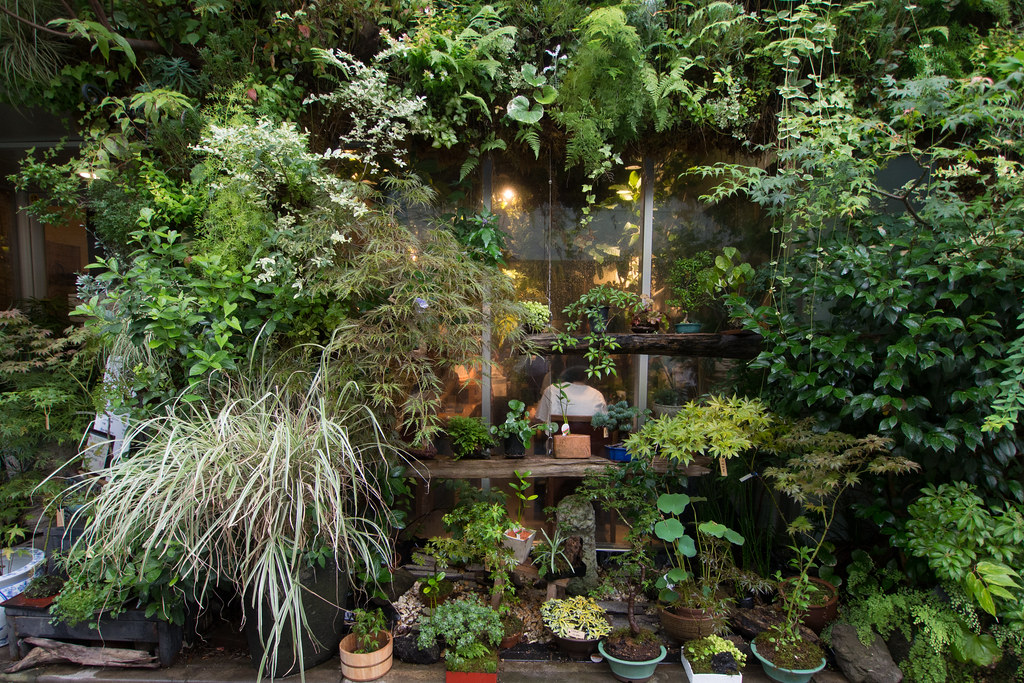 緑に覆われたカフェ 2012/08/11 OMD10011