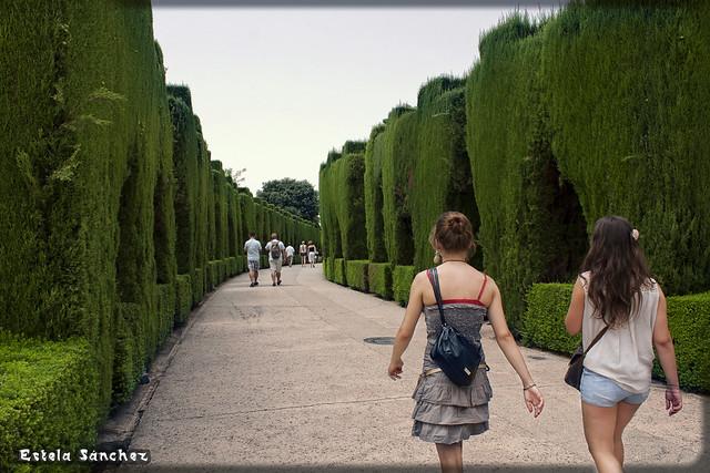 Caminando por los jardines de la alhambra granada for Jardines de gomerez granada