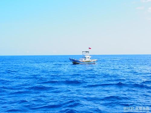 宜蘭 龜山島 賞鯨豚 登島