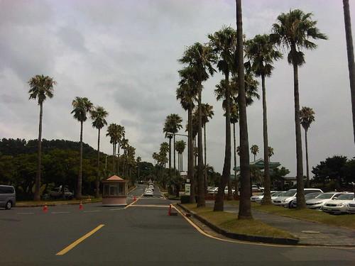 Jeju 2012