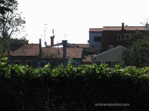 Mazzorbo - La vigna murata